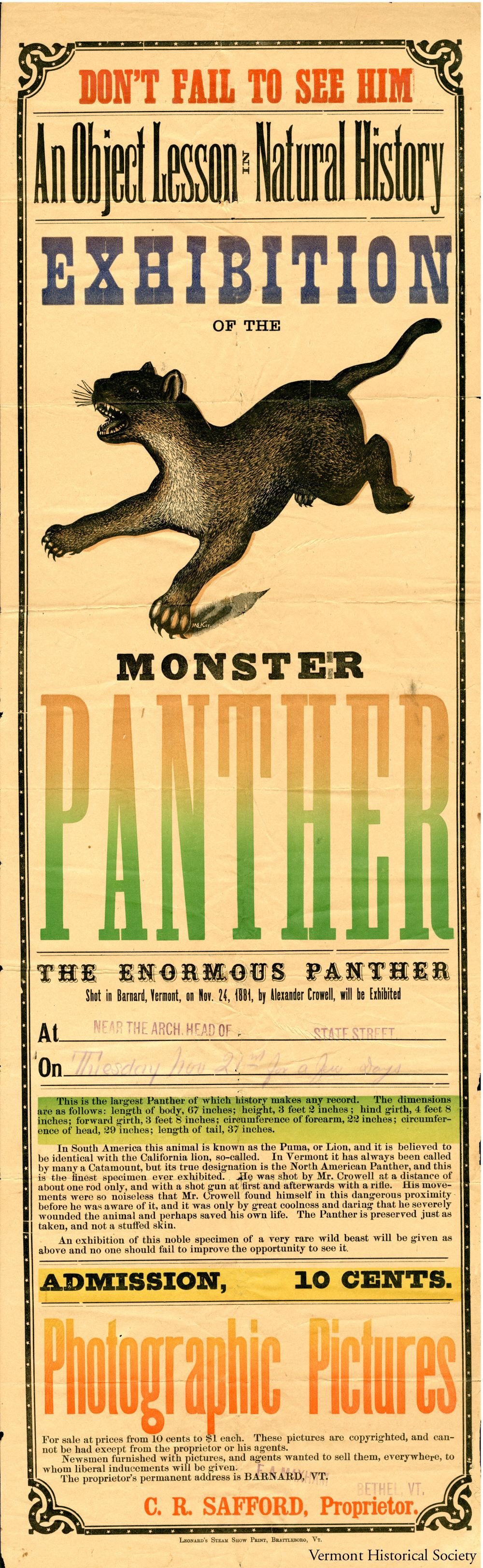 Would this poster make you want to see the Monster Panther? Why or why not?