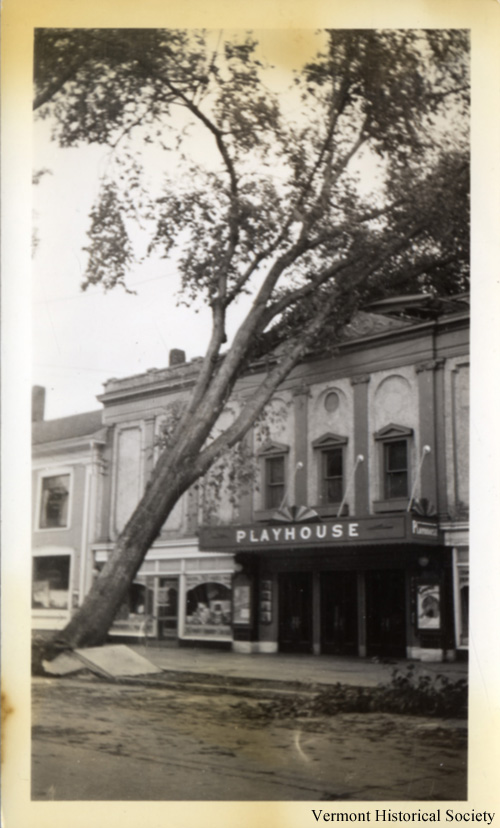 The hurricane knocked down trees. A tree landed on the roof of the Playhouse theater in Montpelier